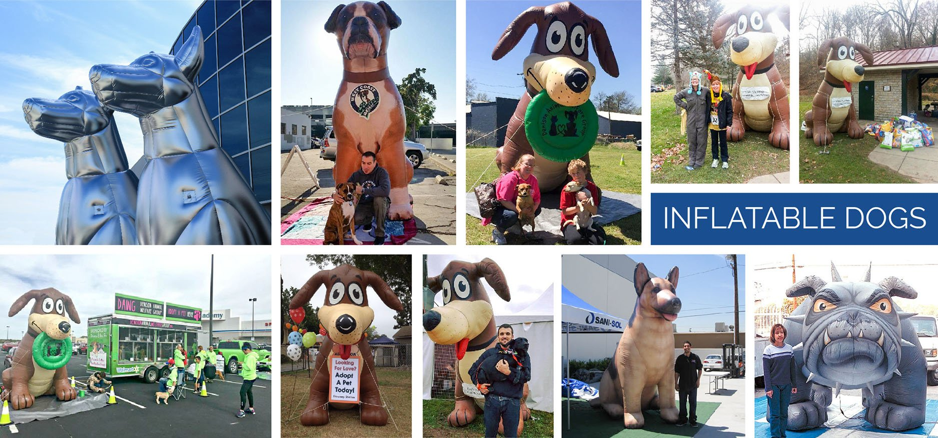 inflatable dog collage replicas