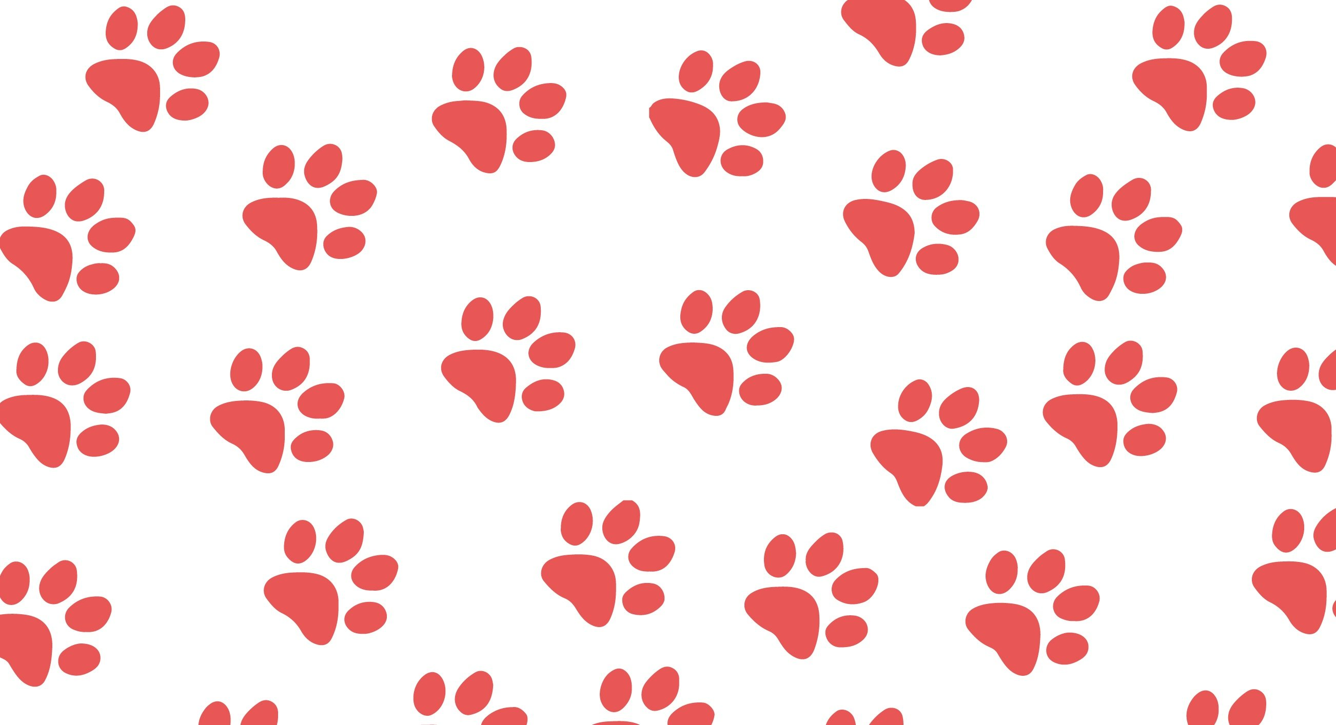 paw prints high-01.jpg