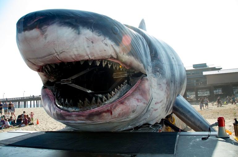 inflatable-shark.jpg