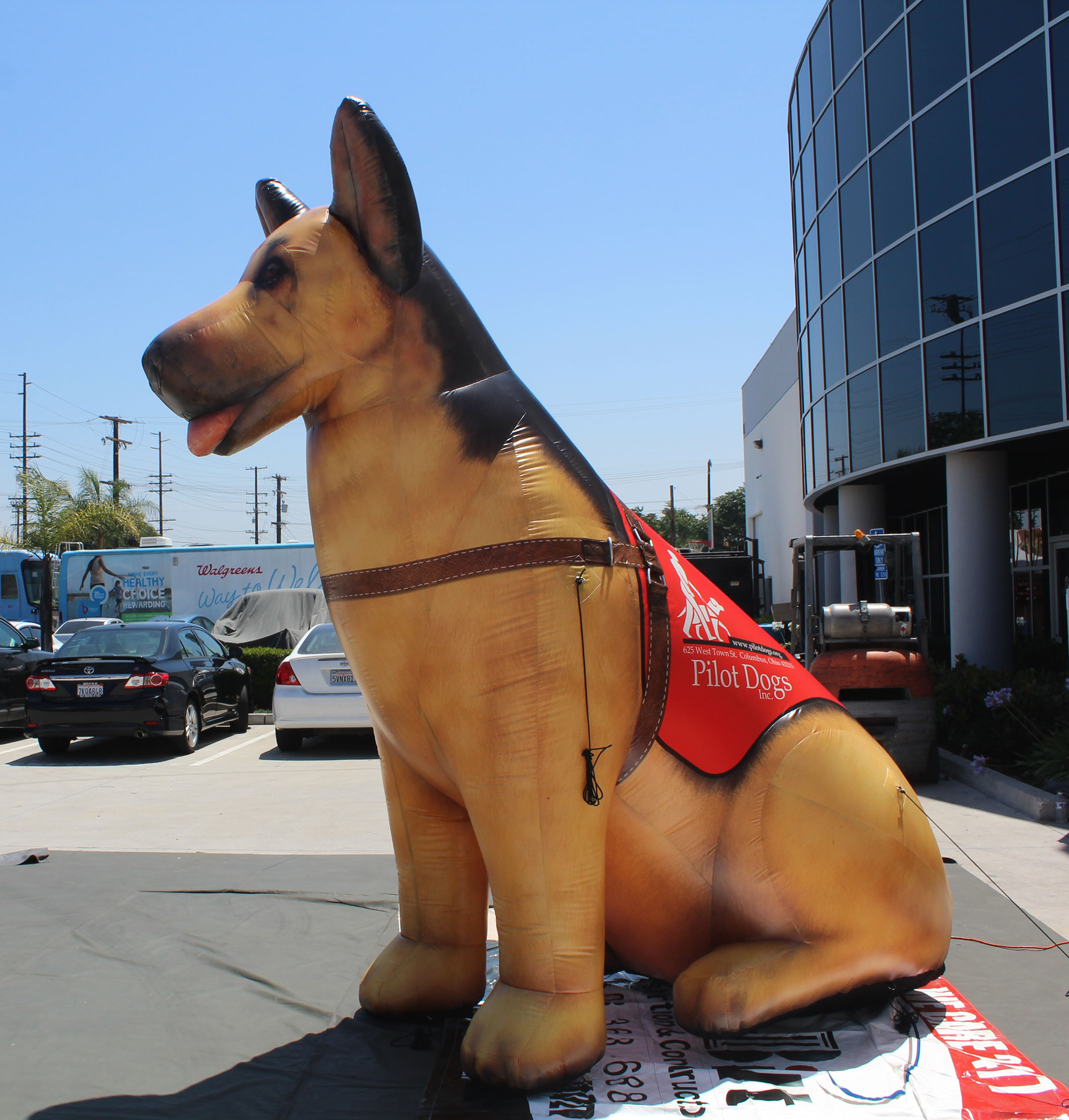 printed inflatable dog with logo