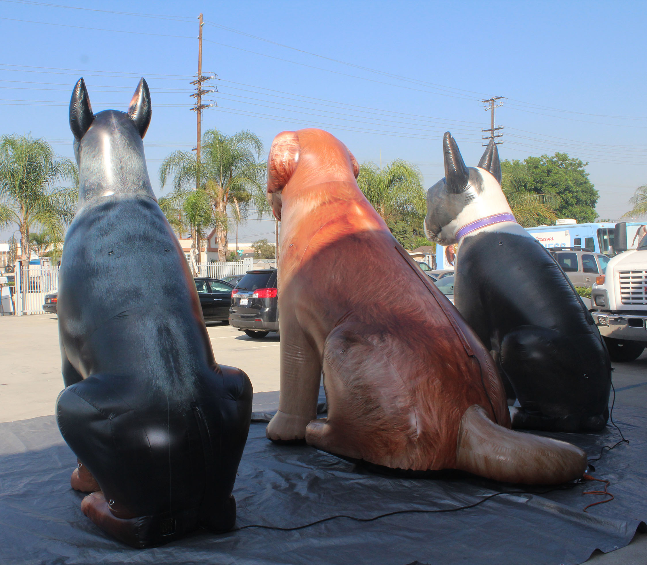 giant inflatable dogs