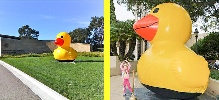 inflatable-duck-10-ft.jpg