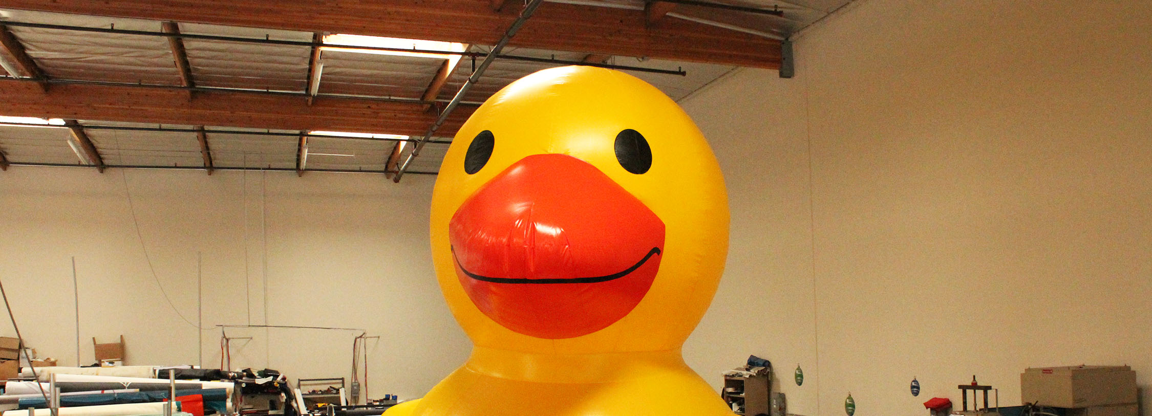 inflatable-duck-head-header.jpg