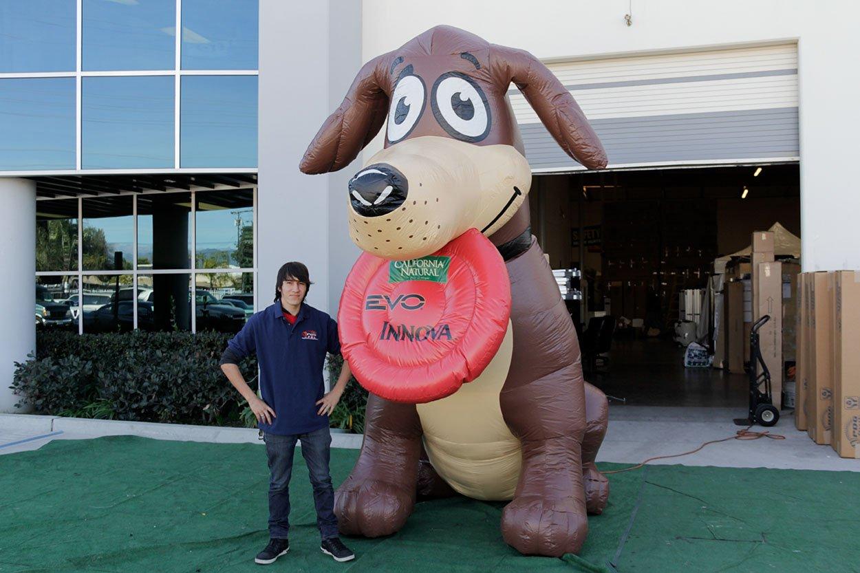 california-natural-dog-customized
