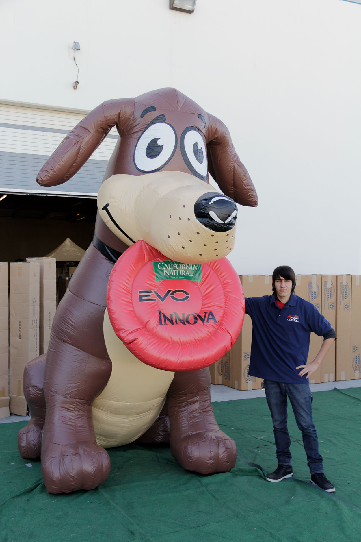 california-natural-dog-evo