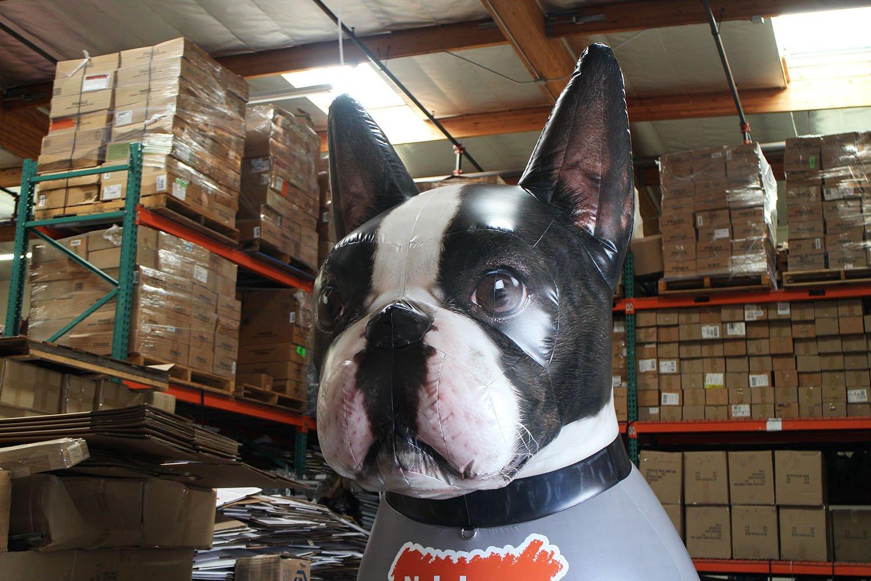 nylabone-dog-head-inflatable