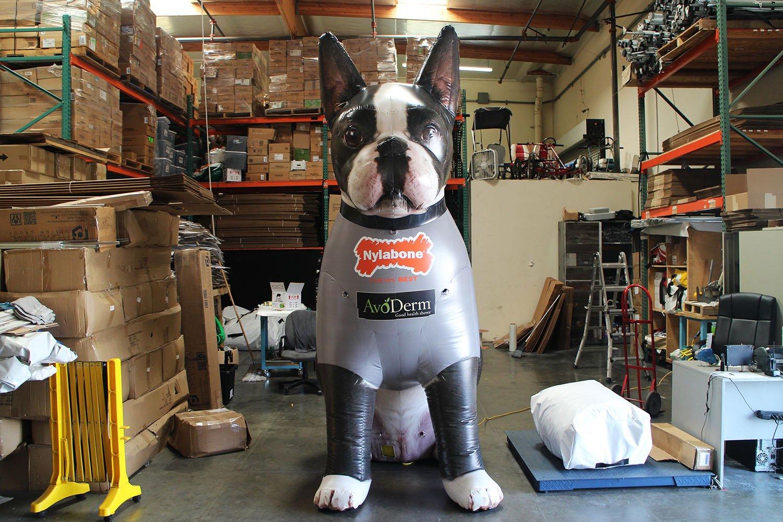 nylabone-dog-front