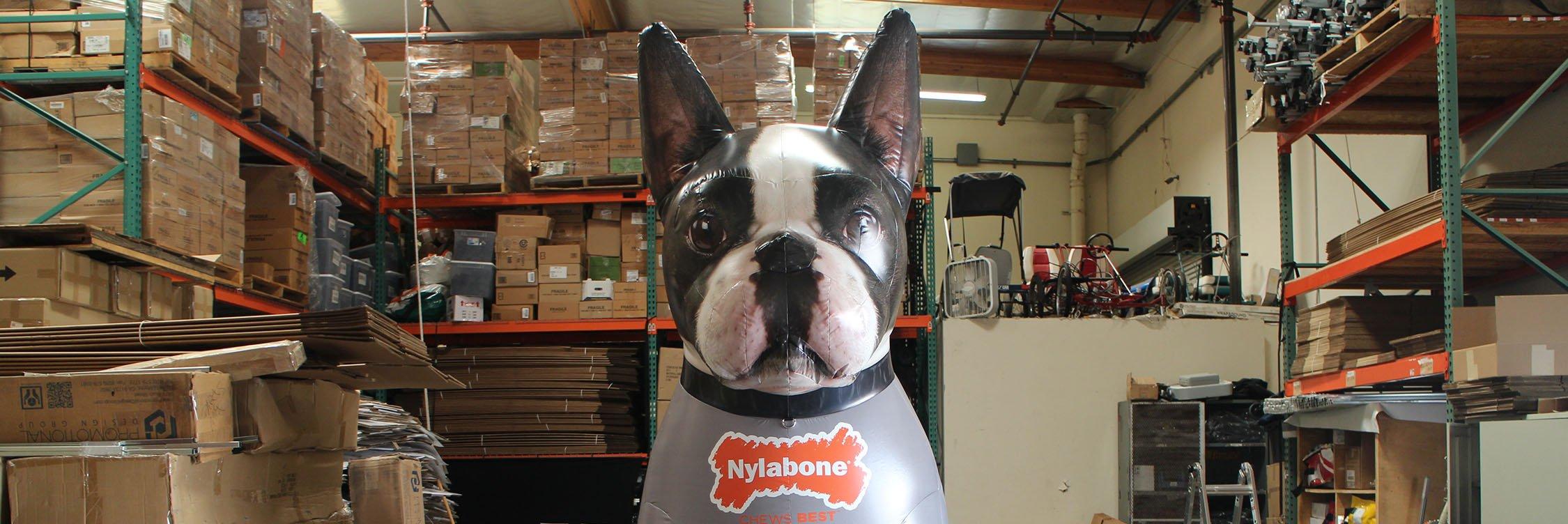 nylabone-dog-inflatable