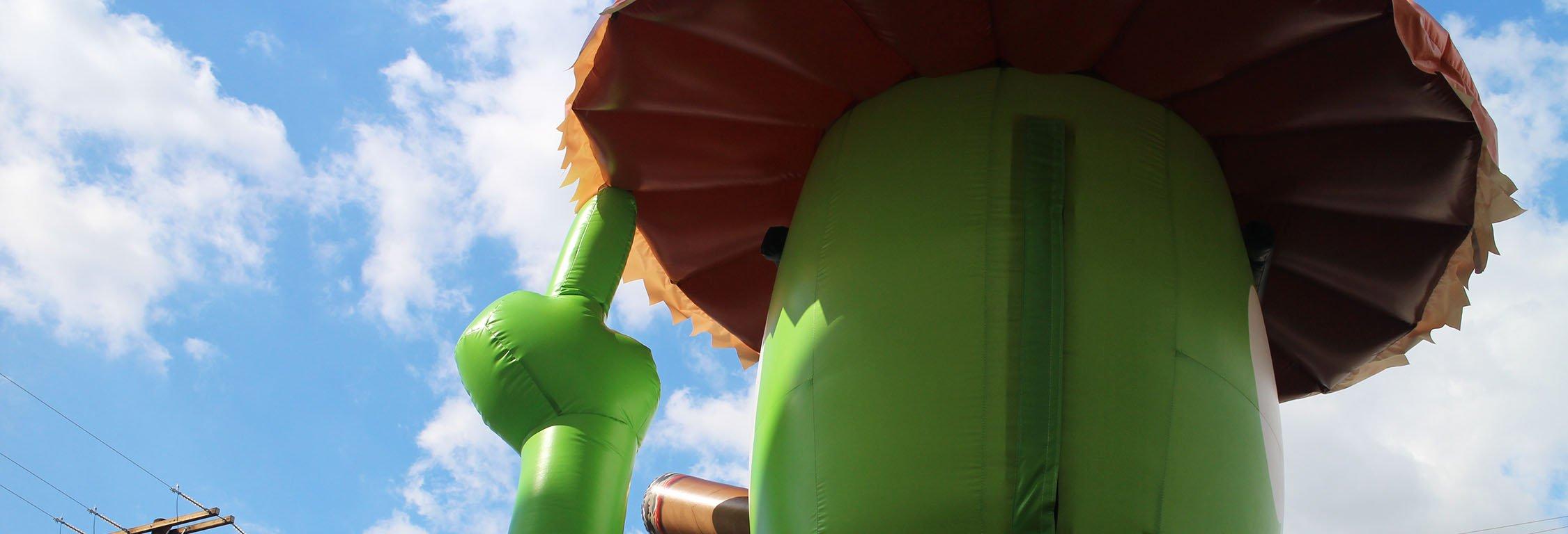texas-roadhouse-lizard-inflatable