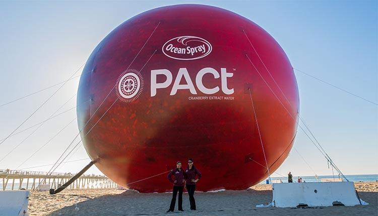 inflatable-cranberry-replica.jpg
