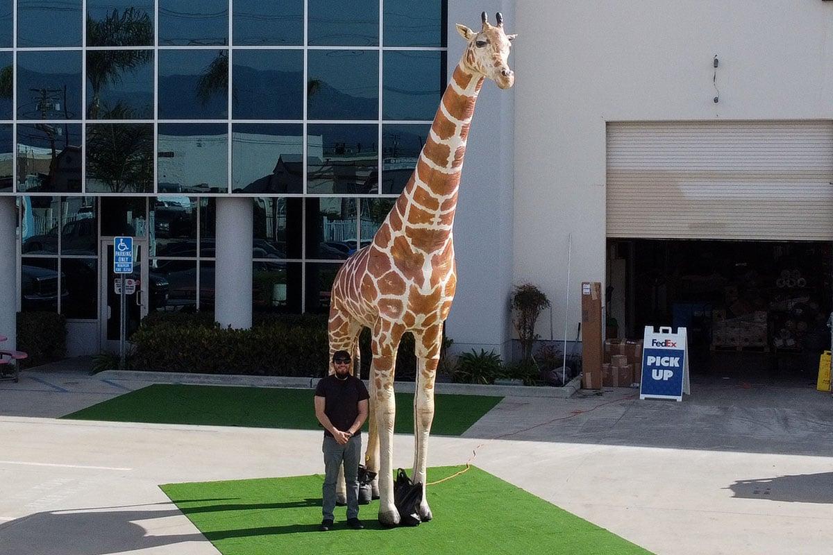 custom-giraffe