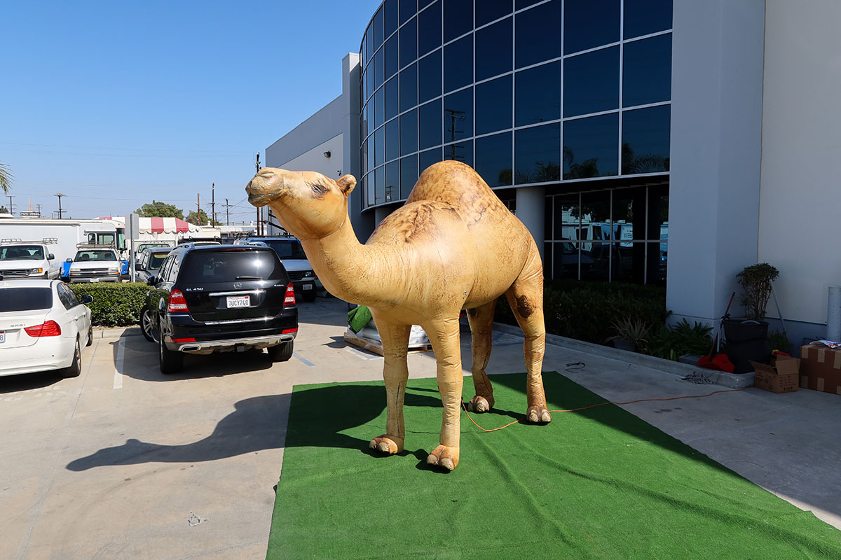inflatable-camel